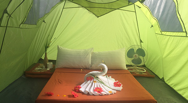 glamping, nurture wellness village