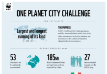 WWF_OPCC_Success_Infographic_2020